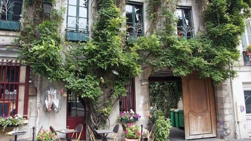 Paris'te Sokaklar Bahçeye Dönüyor