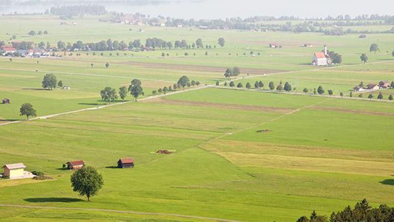 1 Dönüm Kaç Hektar Eder – 1 Hektar Kaç Dönüm 75